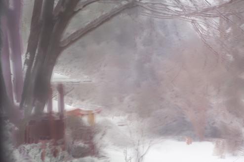 President's Day Snow