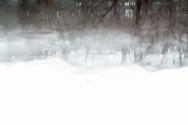beyond the snow bank